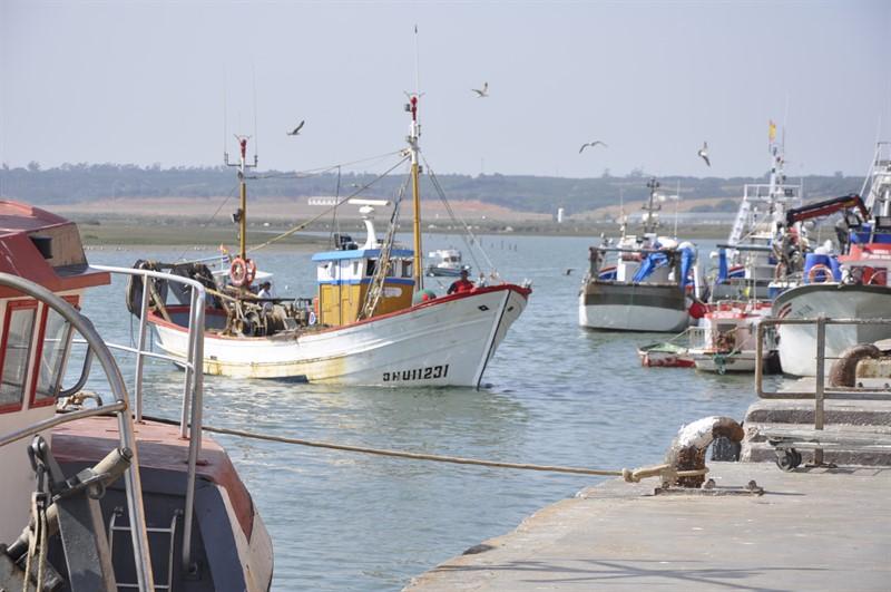 La Junta aprueba la creación del Consejo Asesor Pesquero de Andalucía  8ba1f009dad