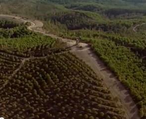 Imagen de video 70