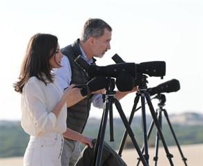 Imagen de video 6